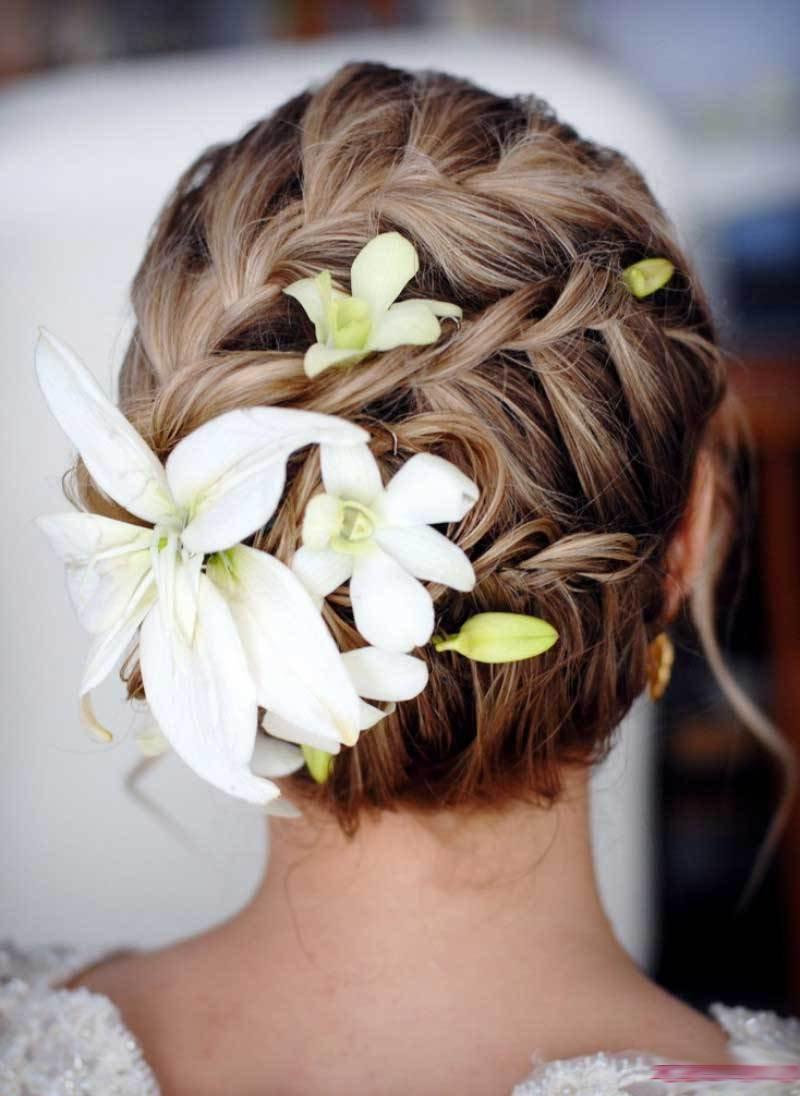 Красивые волосы уход лечение народные средства - b4dd3
